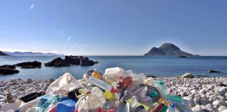 EU Parliament backs ban on single-use plastic products