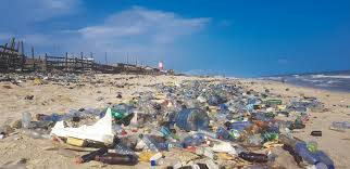 Plastic pollution is said to double by 2030. The era of single-use plastics should end.
