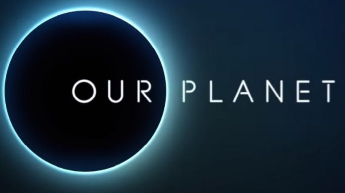 Netflix's Our Planet is both beautiful and uncomfortable